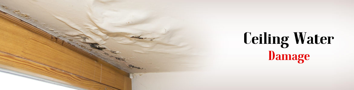 Ceiling Water Damage Restoration