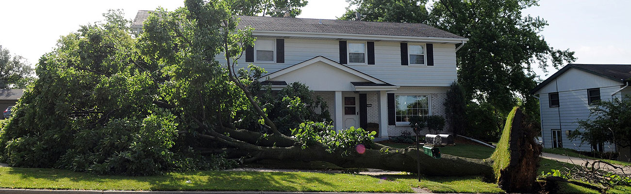 a large tree broken off at the trunk laying down in the front yard of a home