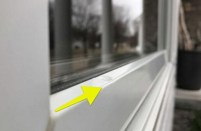 Repair & Replace Your Hail-Damaged Windows