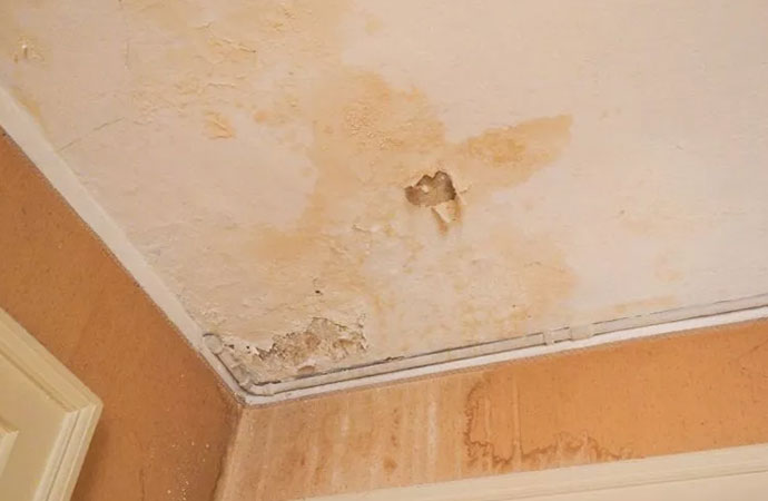 Signs of Water Damage