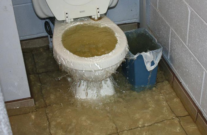 Toilet overflow issues